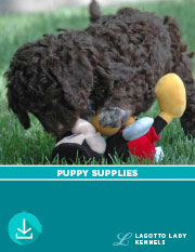 Puppy Supplies to help you prepare
