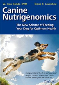 Feeding your dog for optimum health